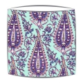 Amy Butler Paisley Fabric Lampshade in Mint